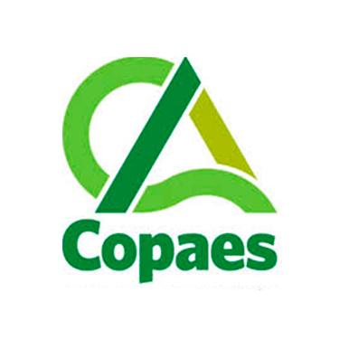 COPAES